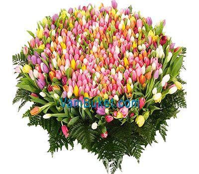 """""""Букет из 1001 тюльпана"""" в интернет-магазине цветов vambuket.com"""