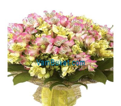 """Bouquet of 41 multi-colored alstroemerias"" in the online flower shop vambuket.com"