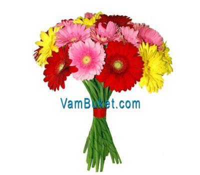 """Bouquet of 21 multicolored gerberas"" in the online flower shop vambuket.com"