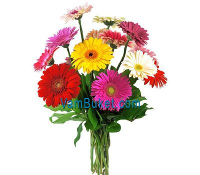 """Bouquet of 11 different colored gerberas"" in the online flower shop vambuket.com"