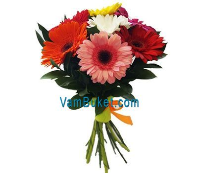 """Bouquet of 9 color gerberas"" in the online flower shop vambuket.com"