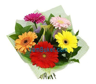 """Bouquet of flowers of 3 varicoloured gerberas"" in the online flower shop vambuket.com"
