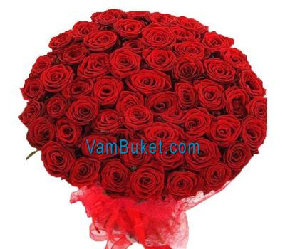 """Bouquet of 75 red roses"" in the online flower shop vambuket.com"