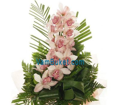 """Bouquet of flowers from 1 branch of white orchid"" in the online flower shop vambuket.com"