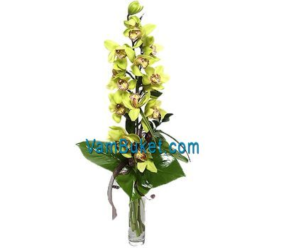 """Bouquet of flowers from 1 branch of a yellow orchid"" in the online flower shop vambuket.com"