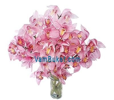 """Bouquet of flowers from 5 branches of a pink orchid"" in the online flower shop vambuket.com"
