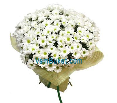 """Bouquet of flowers from 45 chamomile chrysanthemums"" in the online flower shop vambuket.com"
