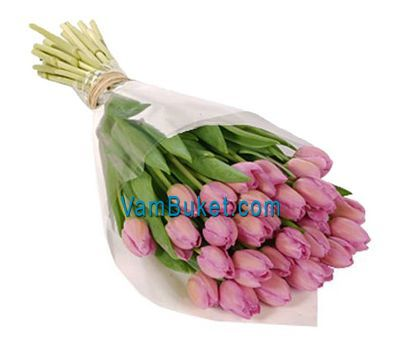 """""""Букет цветов из 35 розовых тюльпанов"""" в интернет-магазине цветов vambuket.com"""
