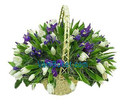 """""""Корзина из 45 тюльпанов и 26 ирисов"""" в интернет-магазине цветов vambuket.com"""