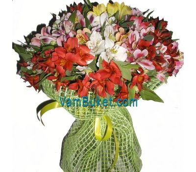 """Bouquet of 51 alstromerias"" in the online flower shop vambuket.com"